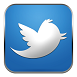 twitter bird full size